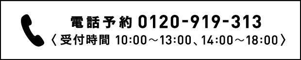 電話予約 0120-919-313〈受付時間 10:00〜13:00, 14:00〜18:00〉